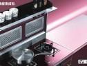 金帝集成环保灶新品M1000、G900系列面市 一线品牌铸就一线品质