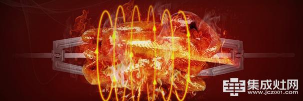 旋转烧烤神器 力巨人嵌入式电烤箱评测