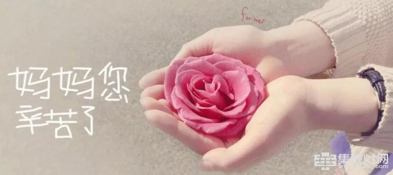 火星一号集成灶:母亲节 送妈妈一朵别致的玫瑰