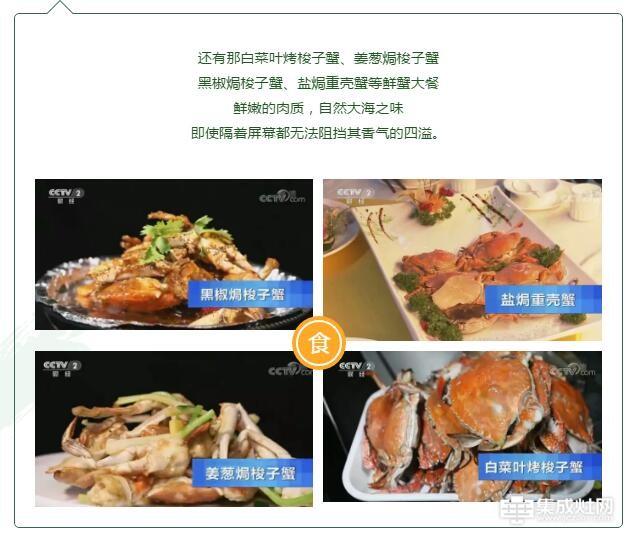 奥田集成灶 CCTV2《消费主张》居家时 你最怀念的味道 虾肥蟹美