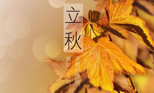 玉叶分体集成灶于您一起迎接秋天的到来